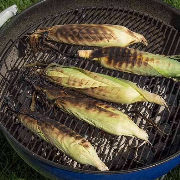 Grill until husks are completely charred black.