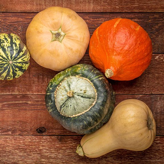 Winter Squash 101: To Acorn and Beyond