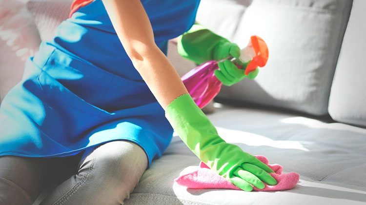 person wearing a blue apron kneeling on a sofa with green latex gloves on, spray bottle in hand, and towel rubbing against the fabric