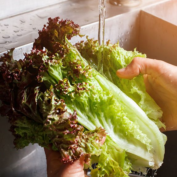 Tips and Tricks: How To Keep Lettuce Fresh