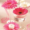 Gerbera Daisy Centerpieces Photo