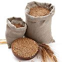 How Whole Grains are Processed Photo