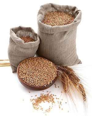 How Whole Grains are Processed