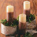 Birch Bark Candles Centerpiece Photo