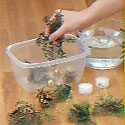 Place greens, pinecones, balls and beads in the freezer-safe container.