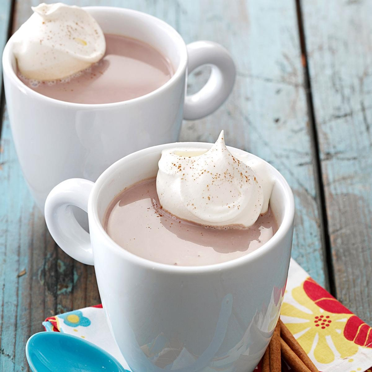 Mexican Hot Chocolate Recipe   Taste of Home