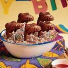 Chocolate Fish Lollipops