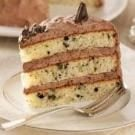 Chocolate Mint Cream Cake