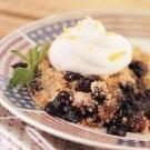 Cinnamon Blueberry Crumble