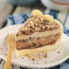 Ladyfinger Ice Cream Cake