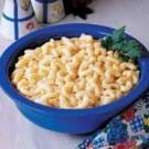 Four-Cheese Macaroni