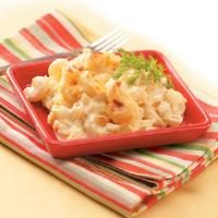 Creamy Macaroni and Cheese Photo