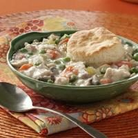 Chicken and Biscuits Pot Pie Photo