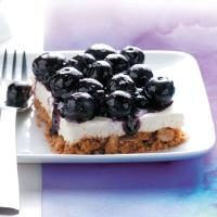 Blueberry Walnut Bars Photo