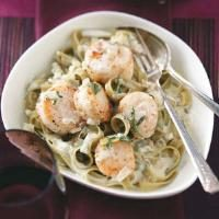 Scallops in Sage Cream Photo