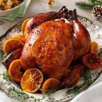 Plum-Glazed Roast Chicken Photo