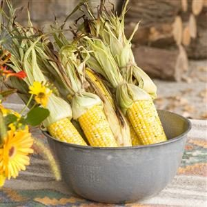 Cilantro-Lime Sweet Corn Recipe