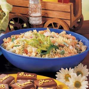 Rainbow Rotini Pasta Salad Recipe