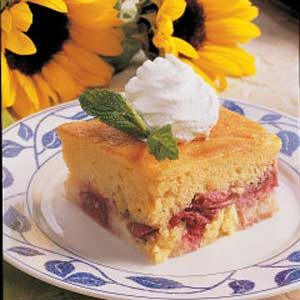 rhubarb custard cake rhubarb custard cake recipe taste of home 7089
