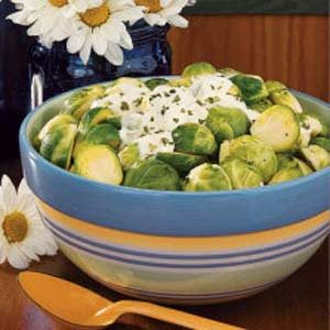 Sprouts with Sour Cream Recipe