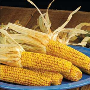 Santa Fe Corn on the Cob Recipe