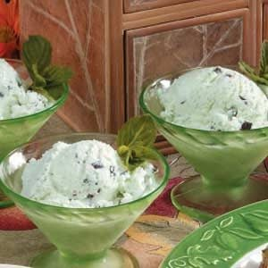 Chocolate Chip Mint Ice Cream Recipe