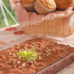 Cinnamon-Chocolate Snackin' Cake Recipe
