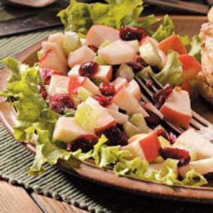 Honeyed Cranberry Waldorf Salad Recipe