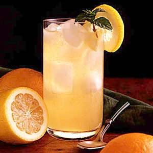 Citrus Mint Cooler Recipe