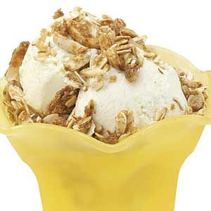 Low-Fat Vanilla Ice Cream Recipe
