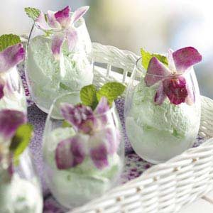 Homemade Lime Sherbet Recipe