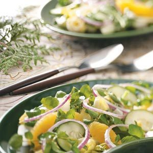 Endive Watercress Salad Recipe