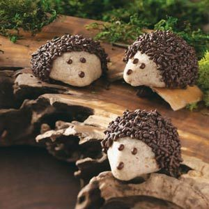 Chocolate-Pecan Hedgehog Cookies Recipe
