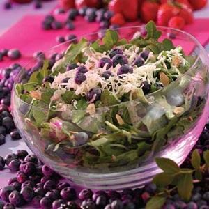 Blueberry Tossed Salad Recipe