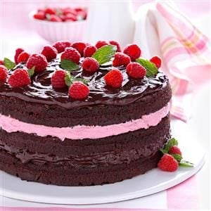 Raspberry Fudge Torte Recipe