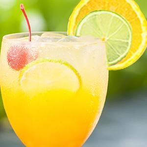Zesty Punch Sipper