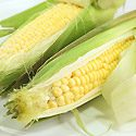 How to Grow Corn Photo