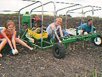 Elna on the home-built asparagus buggy