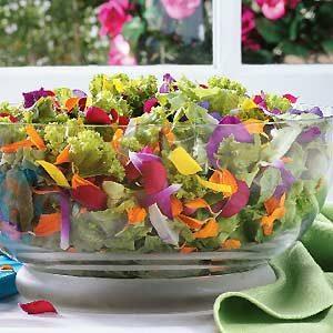 Top 10 Edible Ornamental Plants