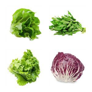 Guide to Fresh Greens