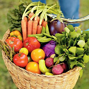 A to Z Guide: How to Grow Vegetables