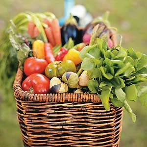 Garden Recipes