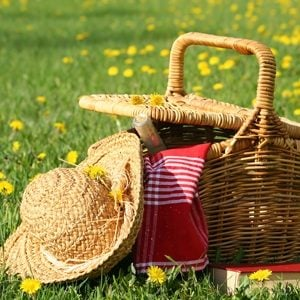 http://hostedmedia.reimanpub.com/TOH/Images/simpleanddelicious-plus/site/picnic-basket.jpg