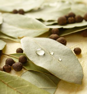 Bay Leaf Recipes